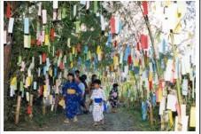 tanabata1-227x151